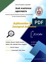 informe Cálculo integral aplicación