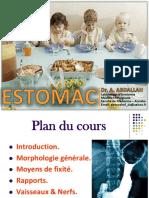 18-Estomac-Dr_ABDALLAH