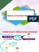notion de gène allèle génotype phénotype
