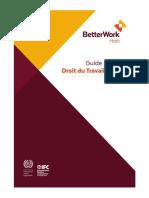 Guide Pratique droit du travail Haiti