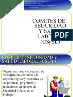 COMITÉ DE SEGURIDAD Y SALUD LABORAL (CSySL).ppt