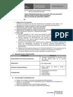 BASE PRACTICAS PREPROFESIONALES N°024-2020