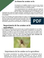 Importancia de las arañas en la agricultura