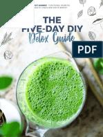 Bridgit Danner 5 Day Detox Guide