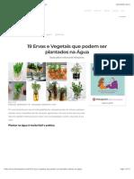 19 Ervas e Vegetais que podem ser plantados na Água.pdf