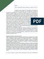 Analisis Dinamico Incremental IDA