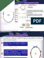 BIM chapitre III et IV (1).pdf