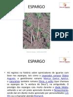 Rui_Pinto_Coop_Felgueiras.pdf
