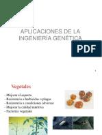 APLICACIONES_DE_LA_INGENIERIA_GENETICA.pdf