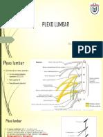 3 plexo lumbar 1.pdf