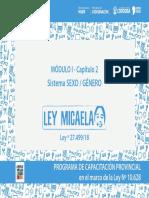 04 Mod I - Cap 2 - Ley Micaela - 2020