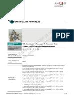 525089_Tcnicoa-de-Mecatrnica-Automvel_ReferencialCP.pdf