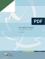 Golden Cushion CEO Compensation