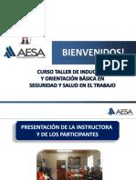 CAPACITACIÓN INDUCCIÓN GENERAL.pdf