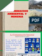 Contaminacion Ambiental y Mineria-2-convertido