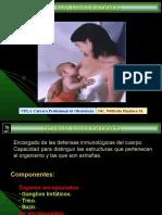 Sistema-inmunológico.ppt