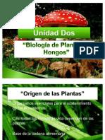 Unidad Dos-Origen de las plantas
