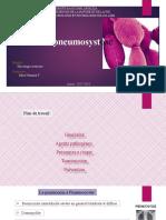 pneumocystose M.pptx