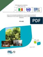 senegal_-_pzta_agropole_sud_resume_de_levaluation_environnementalet_et_sociale_strategique