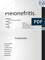 Tema 2 - Pielonefritis