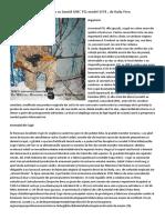 PSL 54C FPK Cugir SSG 97 Romanian article