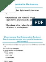 sexdetermination