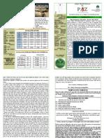 boletim junho 2017.pdf