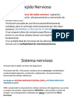 Clase 4 Tejido Nervioso 2019