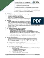5. TDR - ASISTENTE TECNICO