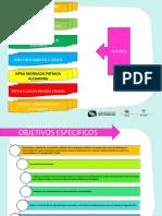 PROYECTO DE RESPONSABILIDAD SOCIAL.pdf