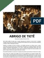 Relatório_Tietê_1