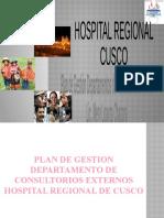 ULTIMO PLAN DE GESTION mejorado remaly