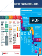 PROCESO INSPECTIVO SUNAFIL.pdf