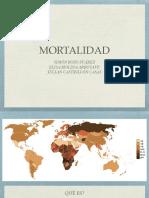 Mortalidad Salud P.