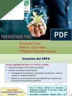 PPT OEFA COMPLETO.pptx