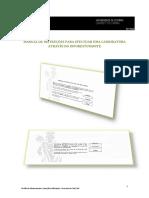 Manual de candidaturas_vfinal1
