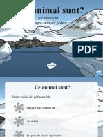 ro-t-t-8434-ce-animal-polar-sunt-eu-joc-interactiv-powerpoint.ppt