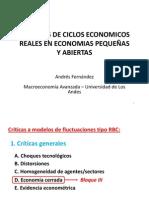 Tema 6 - Modelo RBC en EPA - Andres Fernandez - Macro Avz(2)