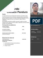 CV 2020 def pdf (3)