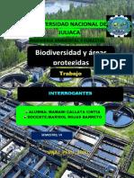 INTERROGANTES.pdf