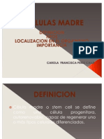 Carola Perez Calle Power Point