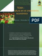 Agricultura en el crecimiento económico