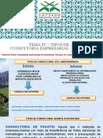 TEMA IV- TIPOS DE CONSULTORIA EMPRESARIAL