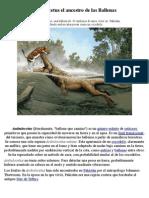 evolucion animal ambolusetus el ancestro de las ballenas