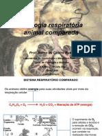 Aula 2 Fisiologia Animal Comparada