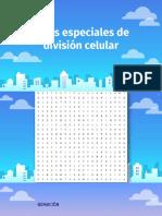 8B - MEIOSIS.pdf