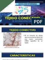 S3-TEJIDO CONECTIVO.pdf