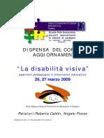 romanzo La disabilità visiva.pdf