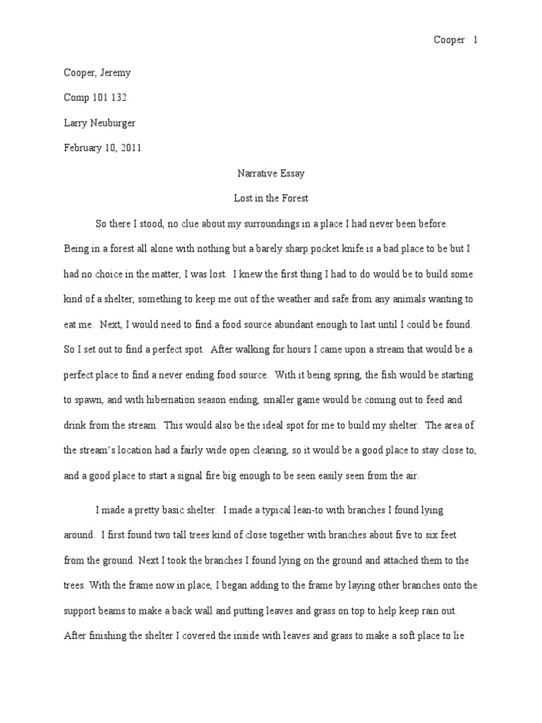 forest descriptive essay  descriptive essay about forest personal narrative essay example for