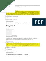 evaluacion final direccion de proyectos 1 elsa cañaveral